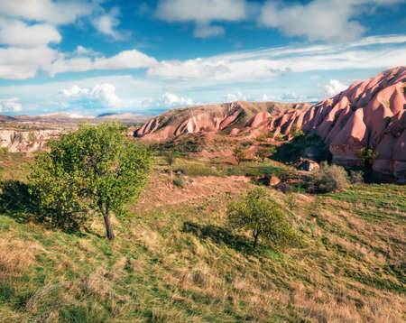 Incredible spring scene of Cappadocia. Picturesque morning view of of Red Rose valley in April. Cavusin village located, district of Nevsehir, Turkey, Asia. Traveling concept background.