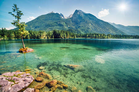 Beautiful summer scene of Hintersee lake. Colorful morning view of Bavarian Alps on the Austrian border, Germany, Europe. Beauty of nature concept background.