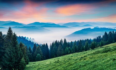 Fantastic morning scene of mountain valley. Stunning summer sunrise in Carpathian mountains, Rika village location, Transcarpathian, Ukraine, Europe. Beauty of nature concept background.