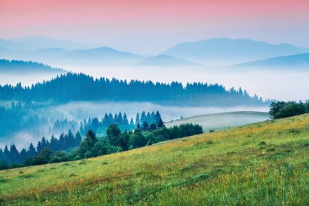 Bright morning scene of mountain valley. Unbelievable summer sunrise in Carpathian mountains, Rika village location, Transcarpathian, Ukraine, Europe. Beauty of nature concept background.