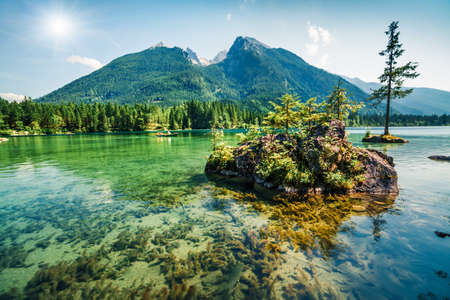 Splendid summer scene of Hintersee lake. Colorful morning view of Bavarian Alps on the Austrian border, Germany, Europe. Beauty of nature concept background.