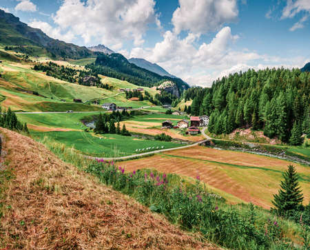 Colorful rural landscape in the Swiss Alps. Beautiful summer view of Switzerland, Europe. Beauty of nature concept background. Artistic style post processed photo. Zdjęcie Seryjne