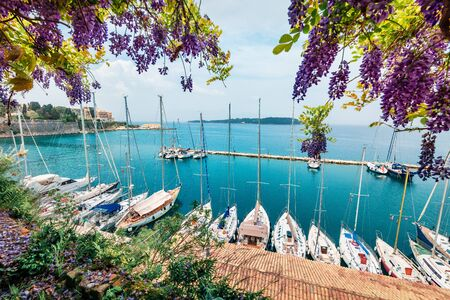 Nice view of the capital of Corfu island. Colorful spring cityscape of port of Kerkira town. Sunny morning seascape of Ionian Sea, Greece, Europe. Traveling concept background.