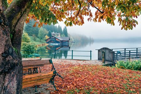 Foggy autumn scene of city park of Altaussee town, district of Liezen in Styria, Austria, Europe. Colorful morning view of countryside of austrian Alps. Beauty of nature concept background. Stockfoto