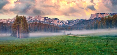 Panoramic summer sunrise scene of Durmitor Nacionalni Park. Dramatic morning view of Montenegro countryside, Zabljak town location. Beautiful world of Mediterranean countries..