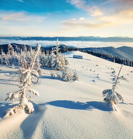 First sunlight glowing mountain hills and valleys in Carpathians. Misty winter sunrise in mountain farm with snow covered fir trees. Beauty of nature concept background. Stock Photo