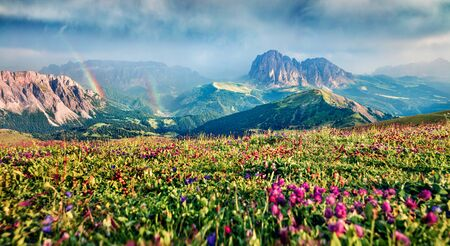 Dramatic summer view of Sassolungo (Langkofel) and Sella group, National Park Dolomites, South Tyrol, Italy, Europe. Fabulous morning scene of Gardena valley, Dolomiti Alps. Beauty of nature concept background Stockfoto