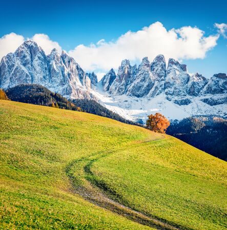 Impressive view of Santa Magdalena village hills in front of the Geisler or Odle Dolomites Group. Colorful autumn scene of Dolomite Alps, Italy, Europe. Beauty of countryside concept background.