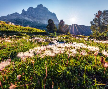 Sunny morning view of western slope of Tre Cime di Lavaredo mpountain peaks. Bright summer scene of Dolomiti Alps, South Tyrol, Italy, Europe. Beauty of nature concept background.
