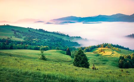 First rays of the sun cover the mountain hills of the Carpathian valley. Foggy morning scene of Carpathians, Ukraine, Europe. Beauty of nature concept background.