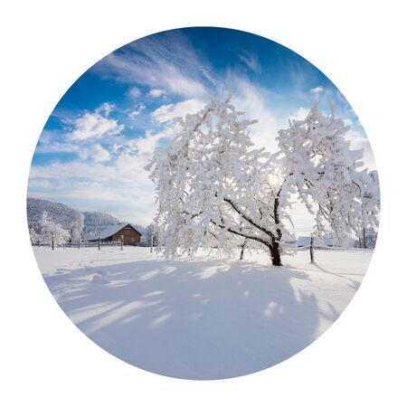 Round icon of nature with landscape. Sunny winter morning in Carpathian village with snow covered trees in garden. Photography in a circle.
