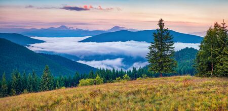 Awesome summer sunrise in Carpathian mountains. Panoramic morning view of mountain valley in June, Ukraine, Tatariv village location, Europe. Beauty of nature concept background.