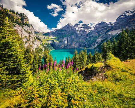 Superb summer view of Oeschinensee Lake. Wonderful outdoor scene of Swiss Alps with Bluemlisalp mountain on background, Kandersteg village location, Switzerland, Europe. Reklamní fotografie