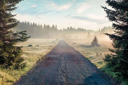 Old asphalt road leads to the Zabljak village Misty summer scene of Durmitor National Park. Sunny morning view of Montenegro countryside. Beautiful world of Mediterranean countries.