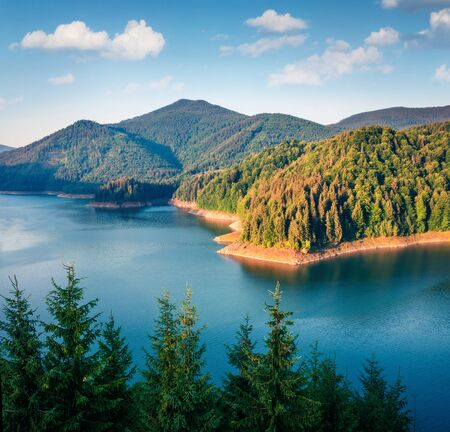 Magnificent summer scene of Dragan lake. Calm morning landscape of Calm Apuseni Natural Park. Splendid outdoor scene of Romania, Europe. Beauty of nature concept background.
