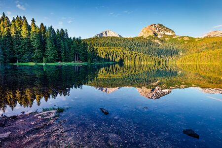 Attractive morning view of Black Lake ( Crno Jezero ). Impressive summer scene of Durmitor Nacionalni Park, Zabljak location, Montenegro, Europe. Beauty of nature concept background.