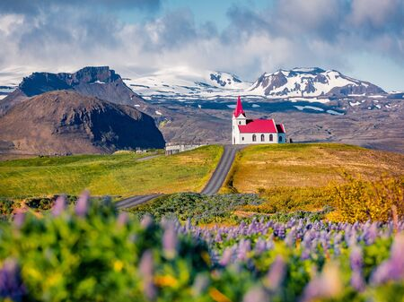 Romantic morning view of ice iconic church - Ingjaldsholl. Sunny summer scene of Iceland with field of blooming lupine flowers and snowy mountains on background. Travel to Iceland.