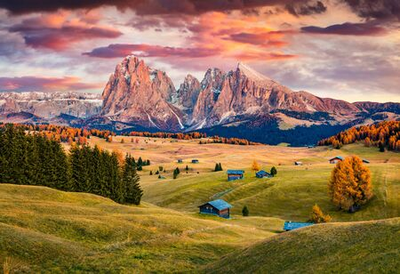 Unbelievable sunrise on Alpe di Siusi mountain plateau with beautiful yellow larch trees and Langkofel (Sassolungo) mountain on background. Autumn evening in Dolomite Alps, Ortisei locattion, Italy.
