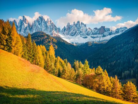 Amazing autumn view of Dolomite Alps, Italy, Europe. Calm morning scene of Santa Maddalena village hills in front of the Geisler or Odle Dolomites Group. Beauty of nature concept background.