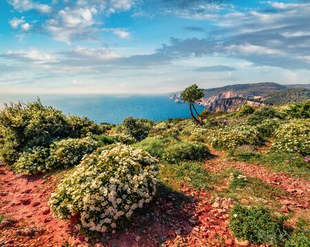 Attractive spring view of high cliffs on the Ionian Sea. Romantic morning seascape of Zakynthos (Zante) island, Greece, Europe. Beauty of nature concept background.