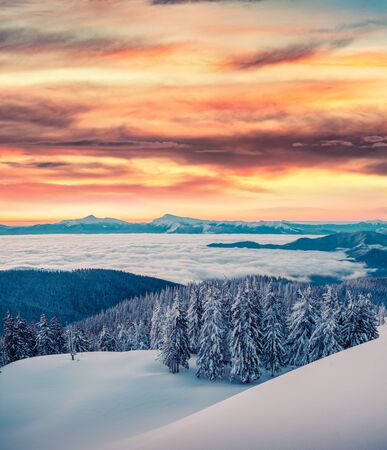 High red sky above winter mountains. Fabulous sunset in Carpathians, Ukraine, Europe. Snowy evening view of mountain valley. Beauty of nature concept background. Stock Photo