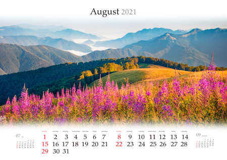 Calendar August 2021, B3 size. Set of calendars with amazing landscapes. Wonderful morning scene of foggy mountain valley with Chamaenerion angustifolium flowers, Carpathians, Ukraine.