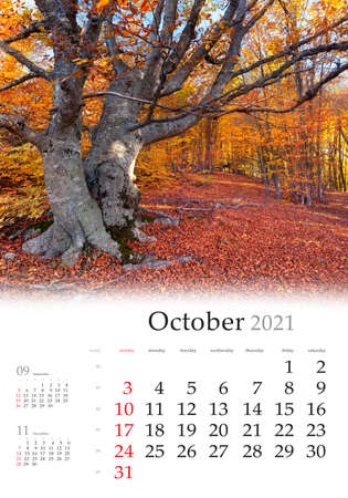 Calendar October 2021, vertical B3 size. Set of calendars with amazing landscapes. Captivating autumn scene of autumn forest with old beerch tree. Nice morning scene of Crimea, Ukraine.