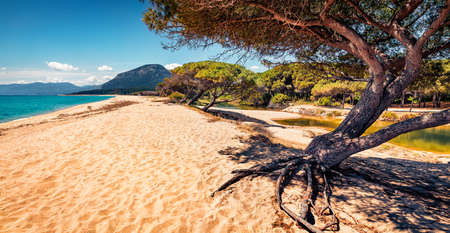 Sunny morning view of Osala Beach. Fantastic summer scene of Sardinia island, Italy, Europe. Beautiful seascape of Mediterranean sea. Traveling concept background.