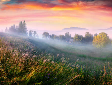 Unbelievable summer view of foggy mountain village. Dramatic sunrise on Transcarpathian, Ukraine, Europe. Astonishing morning scene of Carpathian mountains. Beauty of nature concept background.