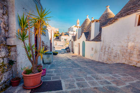 Attractive morning view of strret with trullo (trulli) - traditional Apulian dry stone hut with a conical roof. Fabulous spring cityscape of Alberobello town, province of Bari, Apulia region, Italy, Europe.