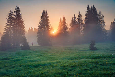 Photographer takes picture of sunrise in Durmitor Nacionalni Park. Foggy morning view of Montenegro countryside, Zabljak town location. Beautiful world of Mediterranean countries.