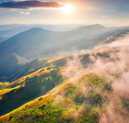 First sunlights glowing foggy mountain hills and valleys. Picturesque summer scene of Carpathian mountains with Homula mount on background, Ukraine, Europe. Beauty of nature concept background.