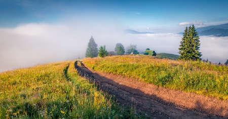 Picturesque summer view of Carpathian Mountains. Foggy morning scene of Stebnyi village, Transcarpathians, Ukraine, Europe. Traveling concept background.