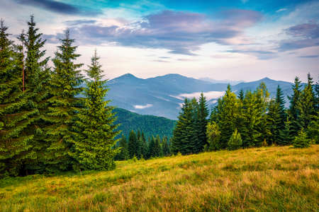 Colorful sunrise on Yahidna mount. Stunning summer view of Carpathian mountains, Ukraine, Europe. Beauty of nature concept background.
