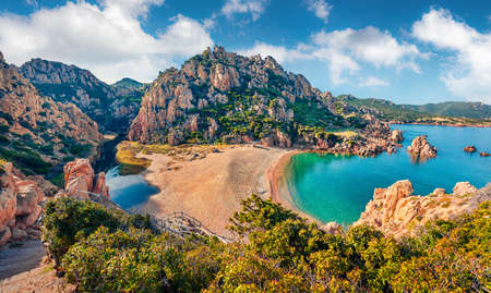 Attractive morning view of Li Cossi beach. Fantastic summer scene of Costa Paradiso, Sardinia island, Italy, Europe. Wonderful Mediterranean seascape. Beauty of nature concept background. 免版税图像