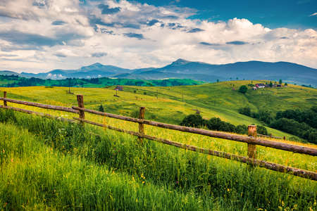 Fresh green view of Carpathians with Hoverla and Petros peaks on background. Colorful summer scene of Carpathian mountains. Beautiful landscape of Ukrainian countryside.