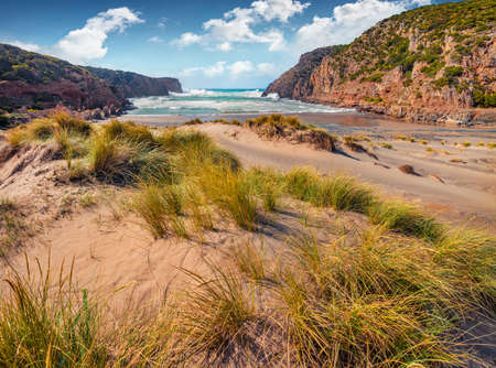 Wonderful morning view of Cala Domestica beach. Stunning summer scene of Sardinia, Italy, Europe. Picturesque landscape of Canyon di Cala Domestica. Beauty of nature concept background.