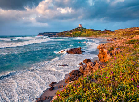 Captivating evening view of Capo San Marco Lighthouse on Del Sinis peninsula. Exotic summer sunset on Sardinia, Italy, Europe. Gorgeous seascape of Mediterranean sea. Traveling concept background.