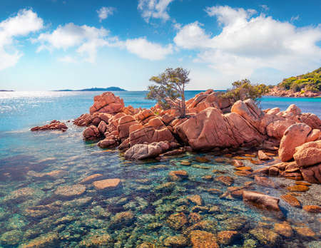 Fabulous summer view of popular touris deastination - Capriccioli beach. Sunny morning scene of public beach with sand & granite rocks nestled in a cove with Mediterranean greenery, Sardinia, Italy.