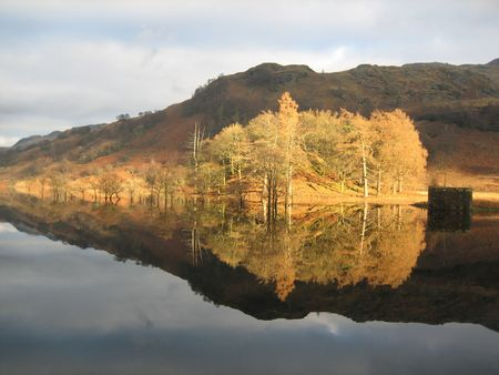loch lomond: Trees, golden under the suns light, cast a perfect reflection on the quiet waters of Loch Lomond.