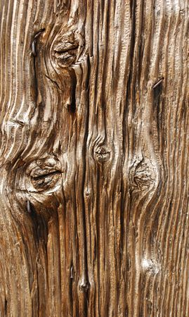 knotting: A close up of a wooden door showing the grains and knotting in the wood