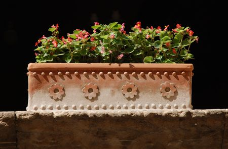 A terracotta planter containing a pink flowering plant on a sunny stone window ledge
