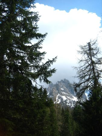 lake misurina: A snowy mountain near Lake Misurina in Northern Italy with foreground trees