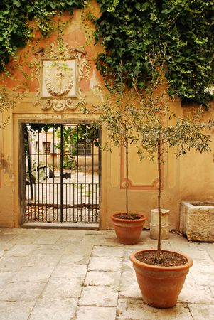 gated: A gated doorway in Albenga, Italy with two small olive trees in front of it and dark foliage overhanging the wall.