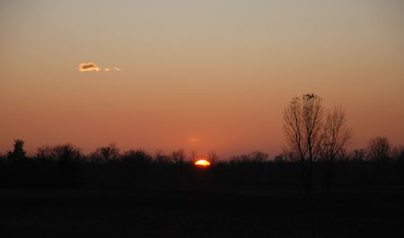 vanished: A winter sunset in the Friuli region of north east Italy. The sun has almost vanished behind the background trees and the light has turned the sky orange