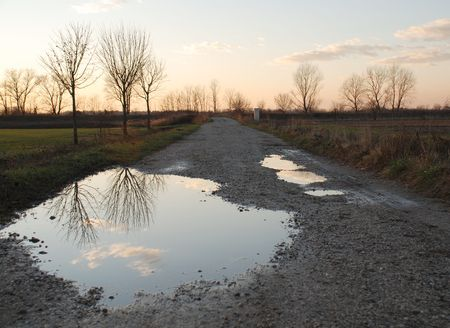 A rural country lane at dusk in winter in the Friuli region of north east Italy. Despite the clear skies, it has recently rained, and the trees and sky are reflected in the puddles