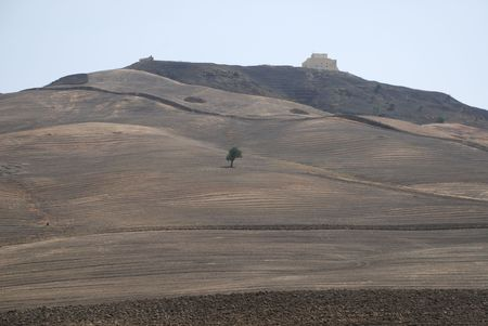 southern europe: The dry, brown landscape of the interior the Puglia region of southern Italy