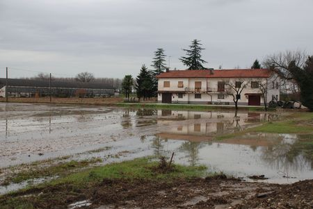 A house in north east Italy with flooded fields following heavy and prolonged winter rains Stock Photo