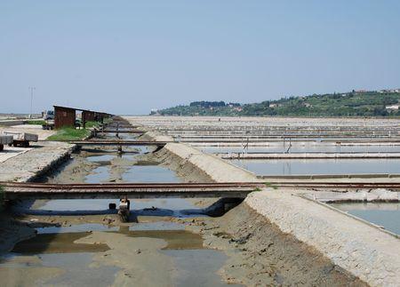crystallization: Salt crystallization fields in the salt flats near Seča in Slovenia Stock Photo