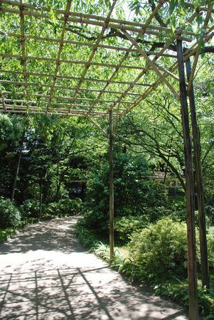 A wooden pergola in the shady gardens of Heian-jing Shrine in Kyoto